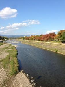 秋の賀茂川01